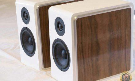 CSS Model P215 Bookshelf Speaker Kit – High-End Sound for Under $1,000